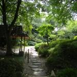 BZ Praha-Troja část Japonské zahrady