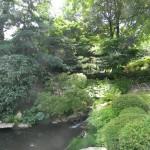 BZ Praha-Troja část Japonské zahrady s jezírkem
