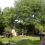 BZ Praha-Troja Japonská zahrada bonsaje
