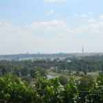 BZ Praha-Troja vyhled vinice