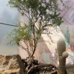 Botanicka- Troja (8)
