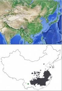Mapa rozšíření PT v Číně a Jižní Koreji