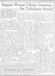 australie varovani trifoliata stock 1950