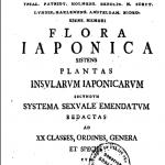 flora japonica titulni strana