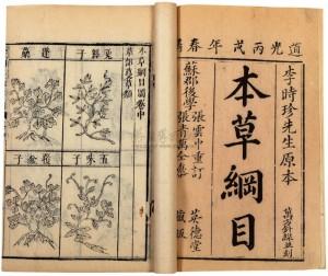 ilustrace compedium of materia medica